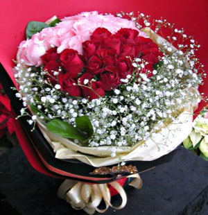 KLHB2822 (Red & Pink roses)